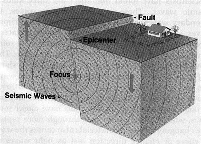 seismicwaves jpg click here to see the diagram and copy it  including the labels  into your notes